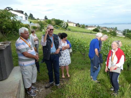 Frairie de la floraison: visite des vignes du Domaine des Lerins, famille Perret. Robert Goffinet, Jacques Peter, Claire Hunkeler, Jean Martenet et Christiane Perrenoud.